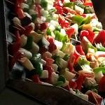 feria_nautica_gastronomica_17