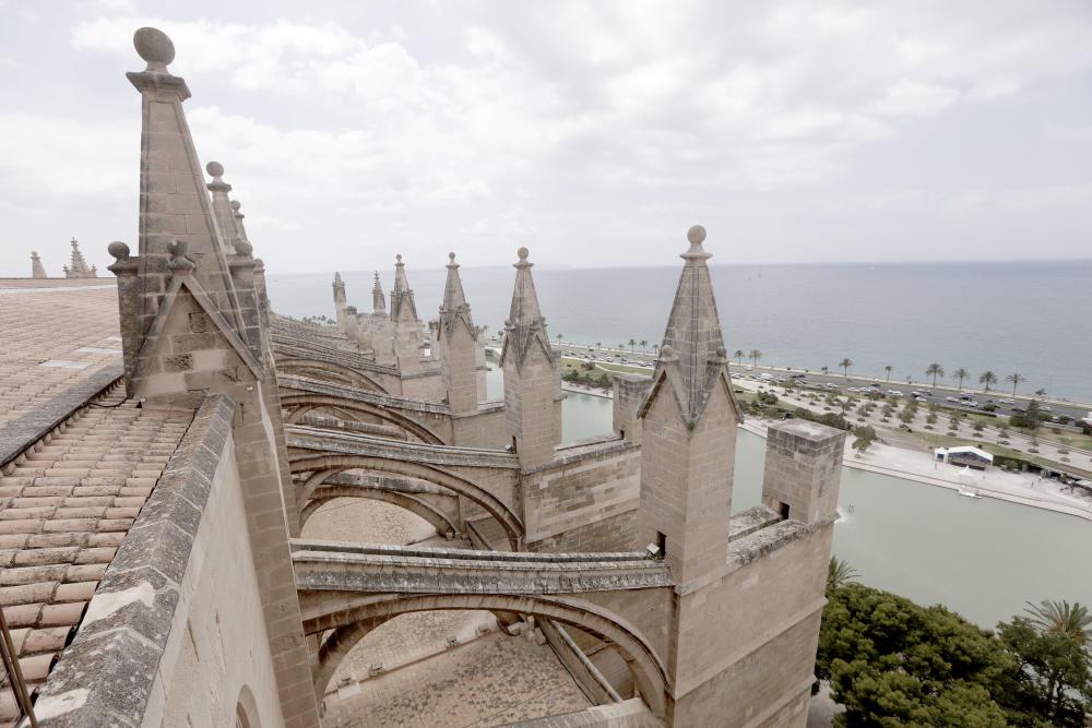 terraza catedral